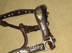 Gorgeous HIGH QUALITY Vintage ALPACA SILVER Shaped Western Horse Sz Show Halter